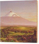 Mount Etna Wood Print
