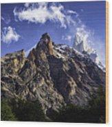 Mount Fitz Roy 3 Wood Print