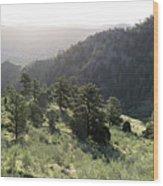 Mount Galbraith In Spring Wood Print