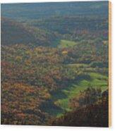 Mount Greylock Foliage View Wood Print