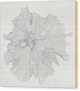 Mount Hood Black Elevation Contours Vintage Wood Print
