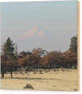 Mount Hood Over The Flats Wood Print