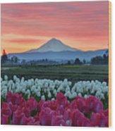 Mount Hood Sunrise Wood Print