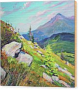 Mount Hoverla Wood Print