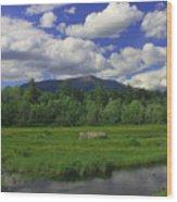 Mount Katahdin Summer Wood Print