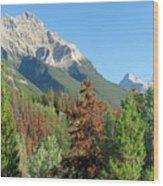 Mount Kerkeslin Wood Print