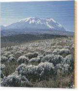 Mount Kilimanjaro, The Breach Wall Wood Print