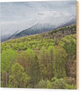 Mount Mansfield Spring Snow Wood Print