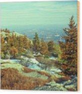 Mount Monadnock Spruce Injury Wood Print