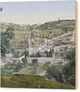 Mount Of Olives, C1900 Wood Print
