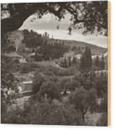 Mount Of Olives Wood Print