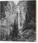 Mount Rainier National Park Wood Print