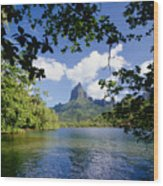 Mount Rotui From Across Opunohu Bay Wood Print