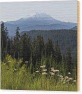Mount St Helens In Washington State Wood Print