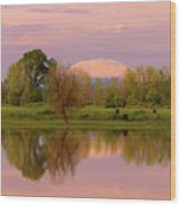 Mount St Helens Reflection During Sunset Wood Print