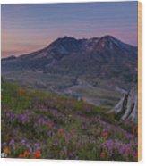 Mount St Helens Spring Colors Wood Print