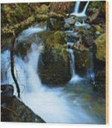 Mount Tam Waterfall Wood Print