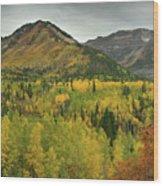 Mount Timpanogos Fall Colors Wood Print