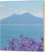 Mount Vesuvius 1 Wood Print