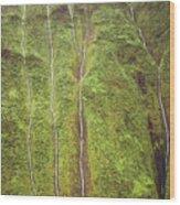 Mount Waialeale Wood Print