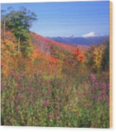 Mount Washingon Flowers Foliage Wood Print