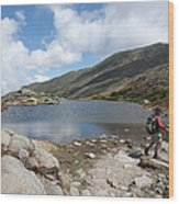 Mount Washington - New Hampshire Usa Lakes Of The Clouds Wood Print