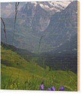 Mount Wetterhorn And The Grindelwald Wood Print by Anne Keiser