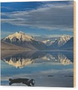 Mountain And Driftwood Reflections Wood Print