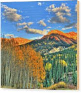 Mountain Beauty Of Fall Wood Print