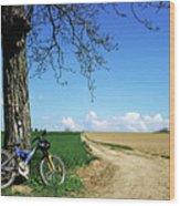 Mountain Bike Under A Tree Beside Dirt Road Wood Print