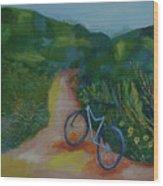 Mountain Biking In The Santa Monica Mountains Wood Print