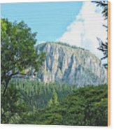 Mountain Charm Wood Print