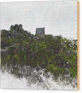 Mountain Cottage In Fynbos Wood Print