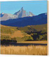 Mountain Country Wood Print