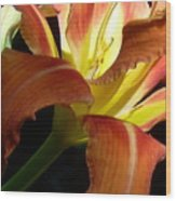 Mountain Day Lily Wood Print