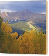 Mountain Fall Wood Print
