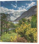 Mountain Flora Wood Print