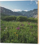 Mountain Glory Wood Print