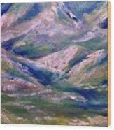 Mountain Gorge Italian Alps Wood Print