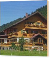 Mountain Guesthouse H A Wood Print