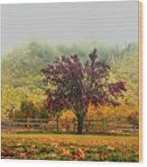 Mountain Haze In A Oak Glen Autumn Wood Print