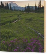 Mountain Heather Sunset Wood Print