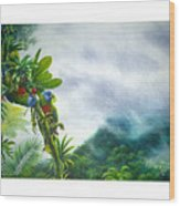 Mountain High - St. Lucia Parrots Wood Print