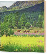 Mountain Horses Wood Print