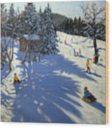 Mountain Hut Wood Print by Andrew Macara
