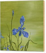 Mountain Iris Wood Print