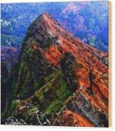Mountain Landscape 27  Wood Print