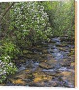Mountain Laurels Light Up Panther Creek Wood Print