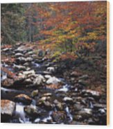 Mountain Leaves In Stream Wood Print