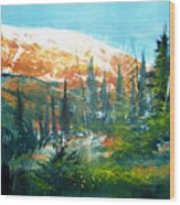 Mountain Light Wood Print by Robert Carver